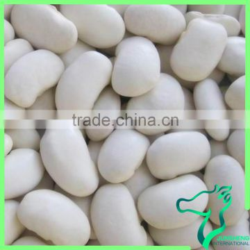 White Kidney Beans Buy Large Type White Kidney Bean Origin In China On China Suppliers Mobile 137638987