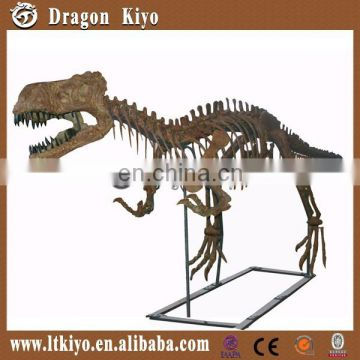 Replica Artificial Life Size Dinosaur Skeleton Model