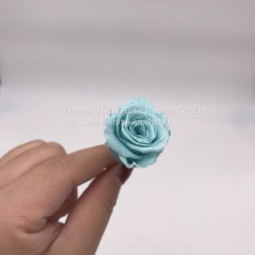 Factory Supply Best Selling Red Preserved Roses at Cheapest Price