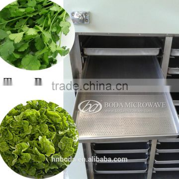 Fruit & Vegetable Processing Machines