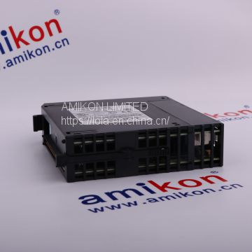 IC693DSM302 GE General Electric  Email me: sales5@amikon.cn