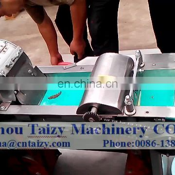 Hot selling Stainless steel fruit and vegetable cutting machine