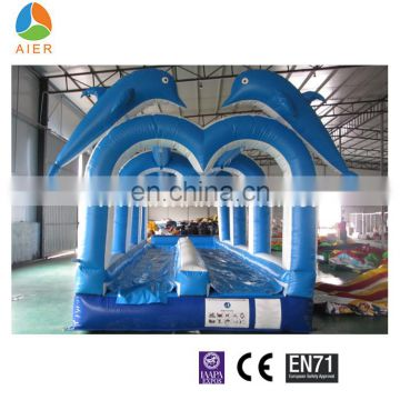 Double lane inflatable water slide, dolphin inflatable water slides, ocean theme water slide
