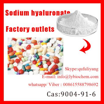 Factory Cosmetic Grade Sodium Hyaluronate with Competitive Price