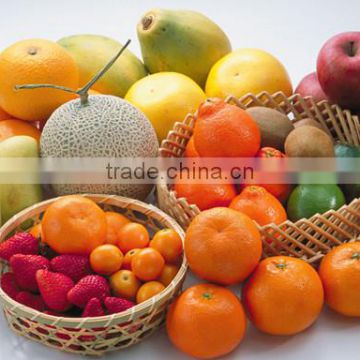 fruit washing waxing and grading machine/orange washing waxing drying and grading machine