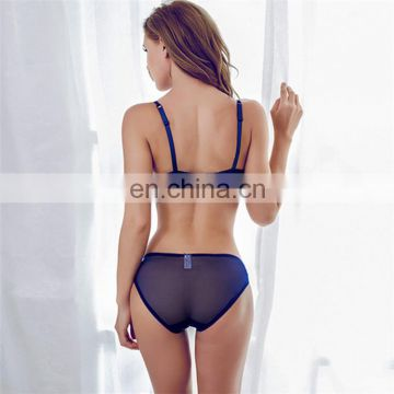 Professional custom new design sexy women panties and bra
