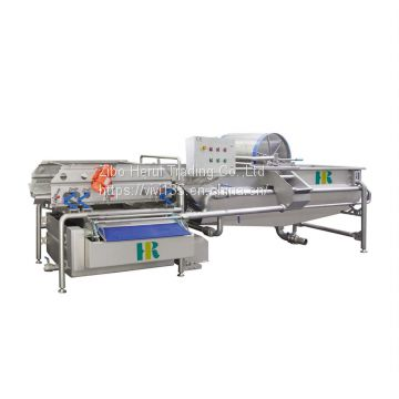 Industrial automatic fruit vegetable washing line
