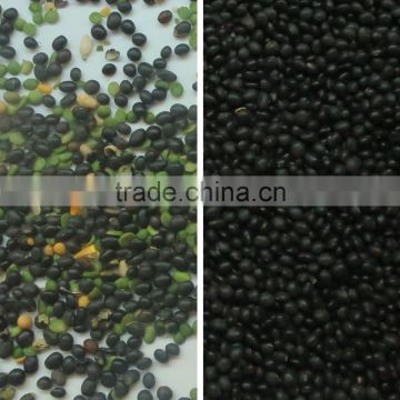 Digital Intelligent CCD Soybean Color Sorter/Soy Bean Processing Sorting Machine From China