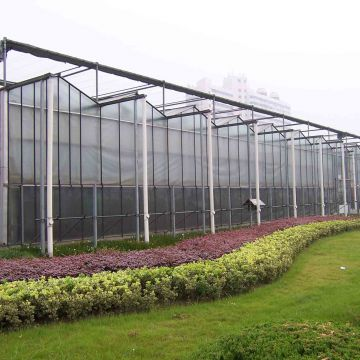 Hydroponic PC Sheet Greenhouse with Irrigation/Fertilization System