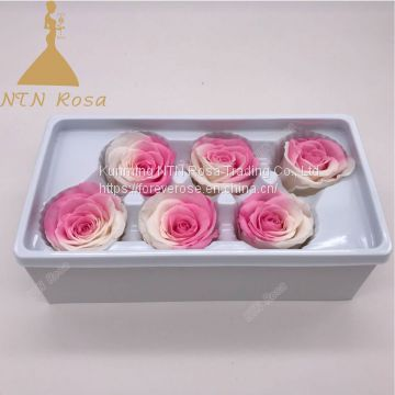 Factory Supply Top Quality Luxury  Preserved Rose Kunming Artificial Flower eternal