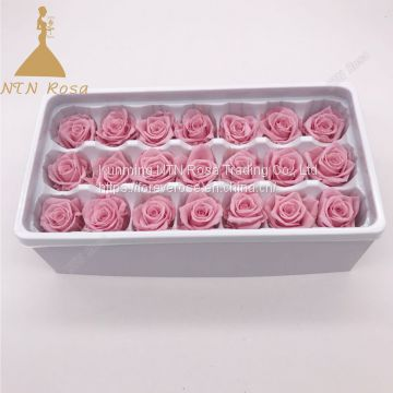 Grade A Size 2-3 cm  Preserved Forever Eternal Rose flower from Kunming Yunnan