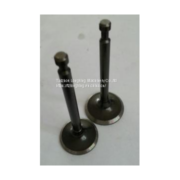 Engine parts for ROBIN EY20 Engine valve/inlet exhaust valve