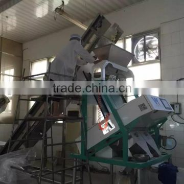 Automatically optoelectronic almond color sorting machine equipment