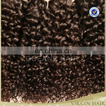 100% unprocessed human virgin brazilian hair kinky curly hair bundles