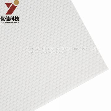 Non-woven fabric Air though nonwoven PE PET Nonwoven