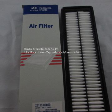 Engine Parts Air Filter for Hyundai 28113 B9000