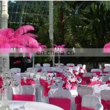 party and wedding decorations ostrich feather