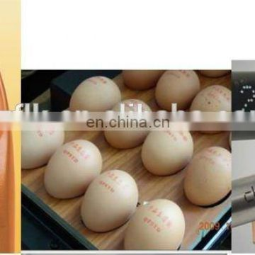 FLK CE Best selling high resolution inkjet printing machine/carton coding machine eggs