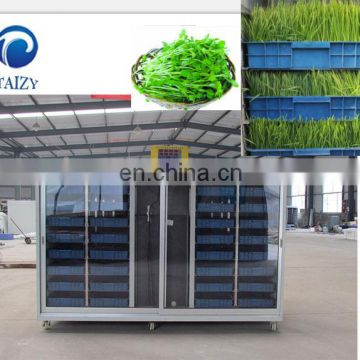 garlic sprouting machine bean sprouting machine seed sprouting machine