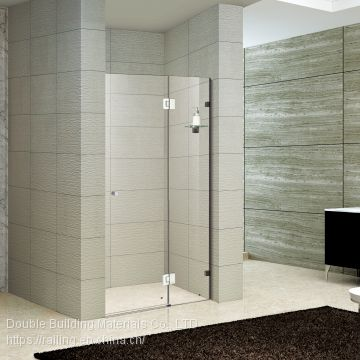 Apartment Custom Glass Shower Partition