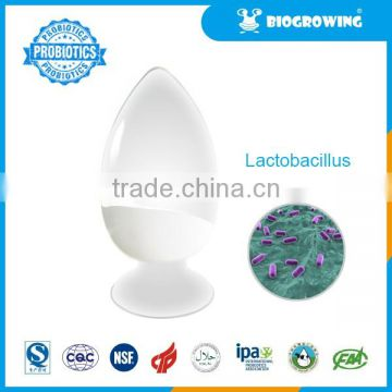 Lactobacillus acidophilus of Probiotic Powder from China Suppliers