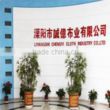 Liyang City Chengyi Cloth Industry Co., Ltd.