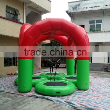Cheap Kids Outdoor Bungee Jumping Trampoline for sale/bungee jumping for kids                                                                         Quality Choice
