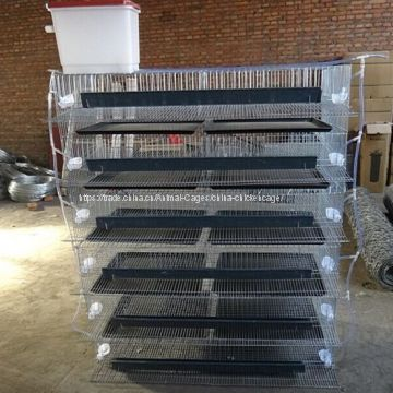 Quail laying cage/quail cage and water system/quail cage price