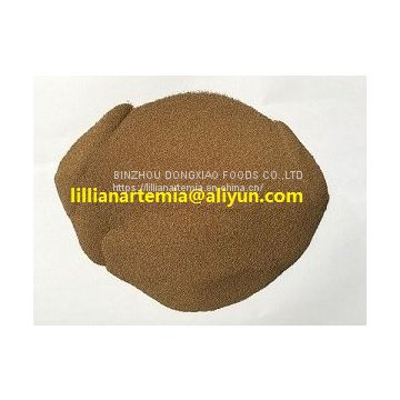 wholesale Russian brine shrimp eggs artemia cysts with high quality
