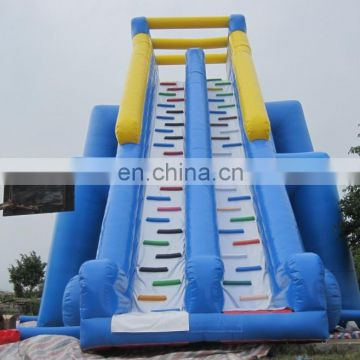 giant hippo inflatable water slide WS053