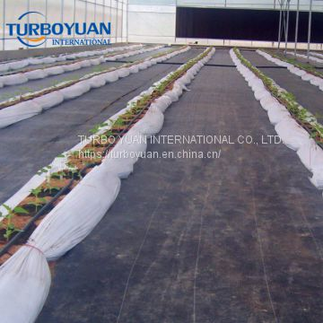 black plastic PP ground cover mesh mat for greenhouse