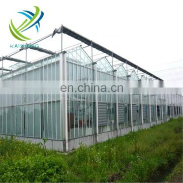 Low Cost Agricultural Glass Greenhouse for Industrial Farming for Sale