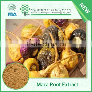 FDA supplier wholesale best selling product Maca root extract powder 20:1 by TLC