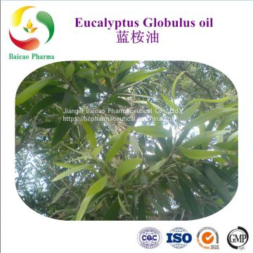 Eucalyptus globulus Essential Oil 50% 60% 70% 80% 99% Cineole Eucalyptol best price manufacturer Natural