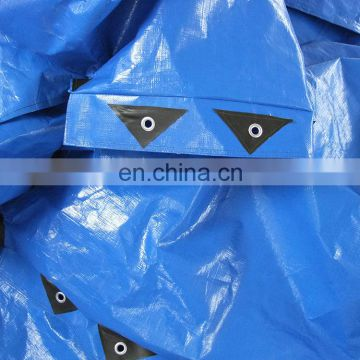 Strong Sewing Exporting Japan Durable Blue PE Bags