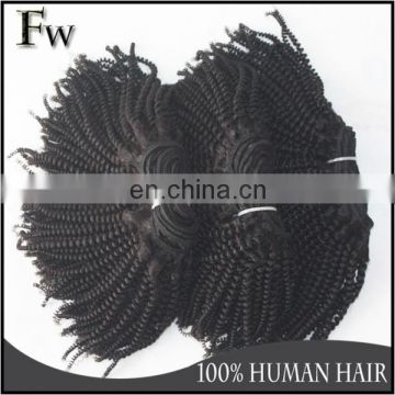 Brazilian virgin remy hair bundles afro kinky human hair for braiding kinky hair extensions with free samples