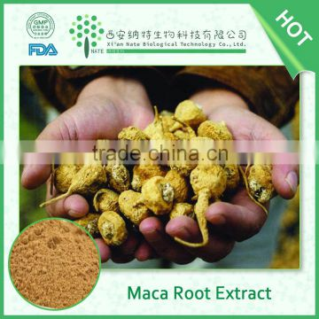 GMP supplier top quality Maca Extract Powder 10% Macamides Macaenes in low price