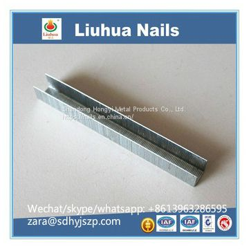 FINE WIRE NAIL 53 staples series 4-14mm 530 staples U-Type Nail