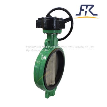 Ductile Cast Iron Wafer Type Wafer Control Industrial Butterfly Valve