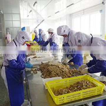 Dandong Huayi Foodstuff Co., Ltd.