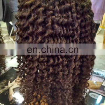 Glueless Natural Color Brazilian Virgin Human Hair Lace Front Wig Kinky Curly for Black Women