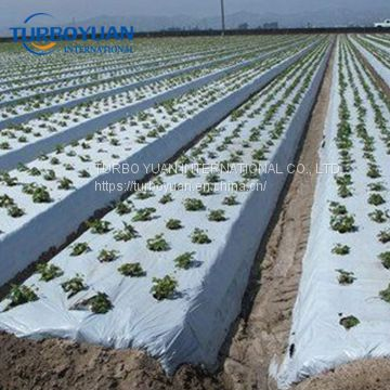 biodegradable reflective silver/black pe plastic mulch film for Japan