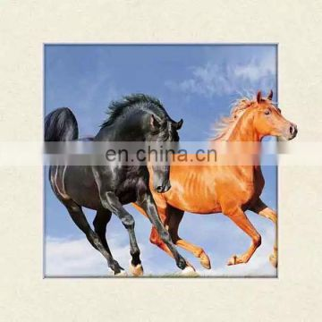 Lovely design 5d lenticular picture of horse aniaml for gifts and home decoration
