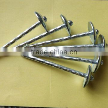 Galvanized Umbrella Head smooth and twisted Shank Roofing Nail from nails supplier