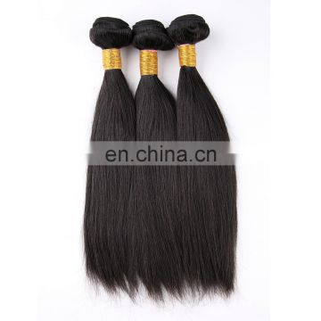 High Grade Virgin Silky Straight Brazilian Remy Raw Human Hair