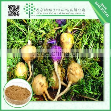 2015 wholesale supplier maca root extract powder 4:1 /10:1/50:1 natural low price