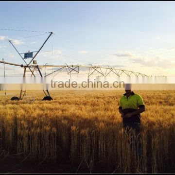 Weimeng Shengfei Farm Agriculture Irrigation System for Pivot Center Machinery from factory