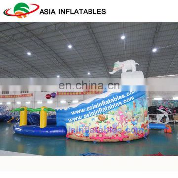 Kids Used Water Slide For Sale , Cheap Inflatable Water Slides With Pool
