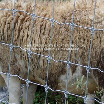 China Supply Fixed Knot Woven Wire Mesh Goat Fence