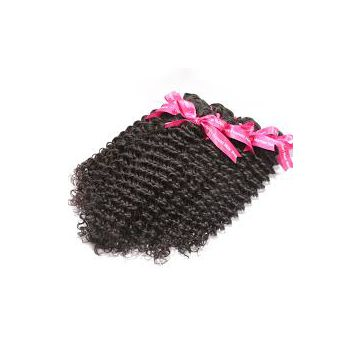 Malaysian Curly Chemical free Human Hair Wigs Thick